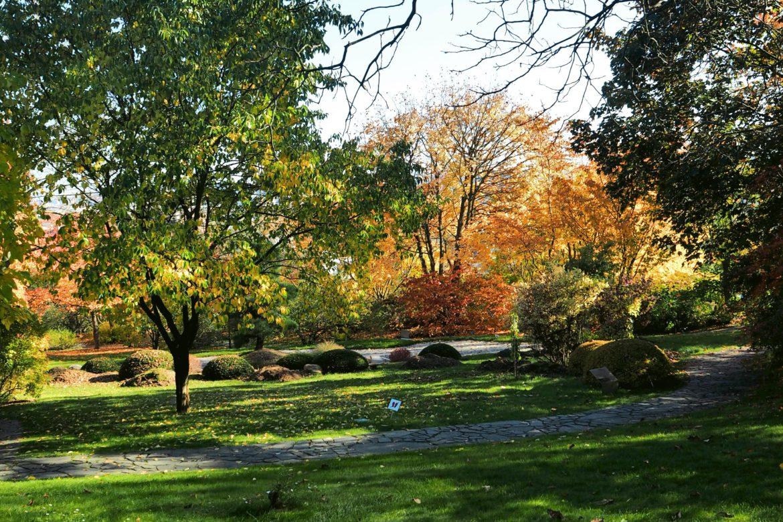 20 Photos To Inspire You To Visit Prague Botanical Garden Prague And Elsewhere
