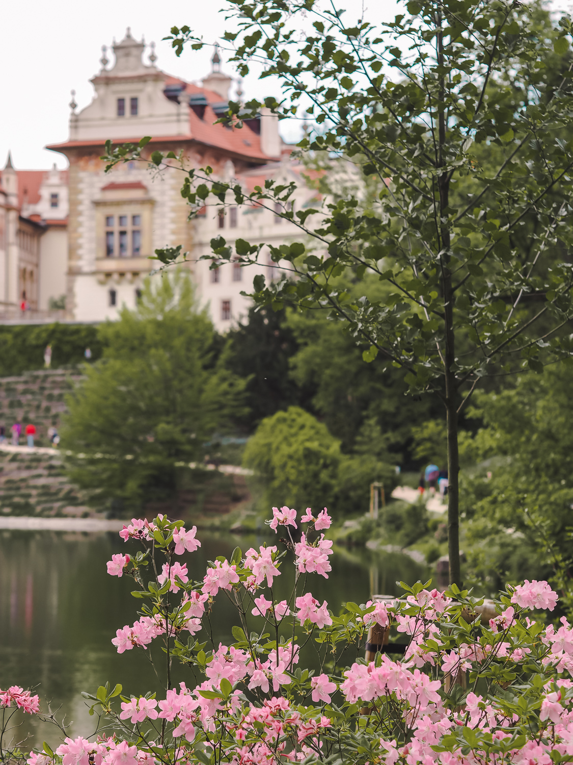 Prague Spring Photography