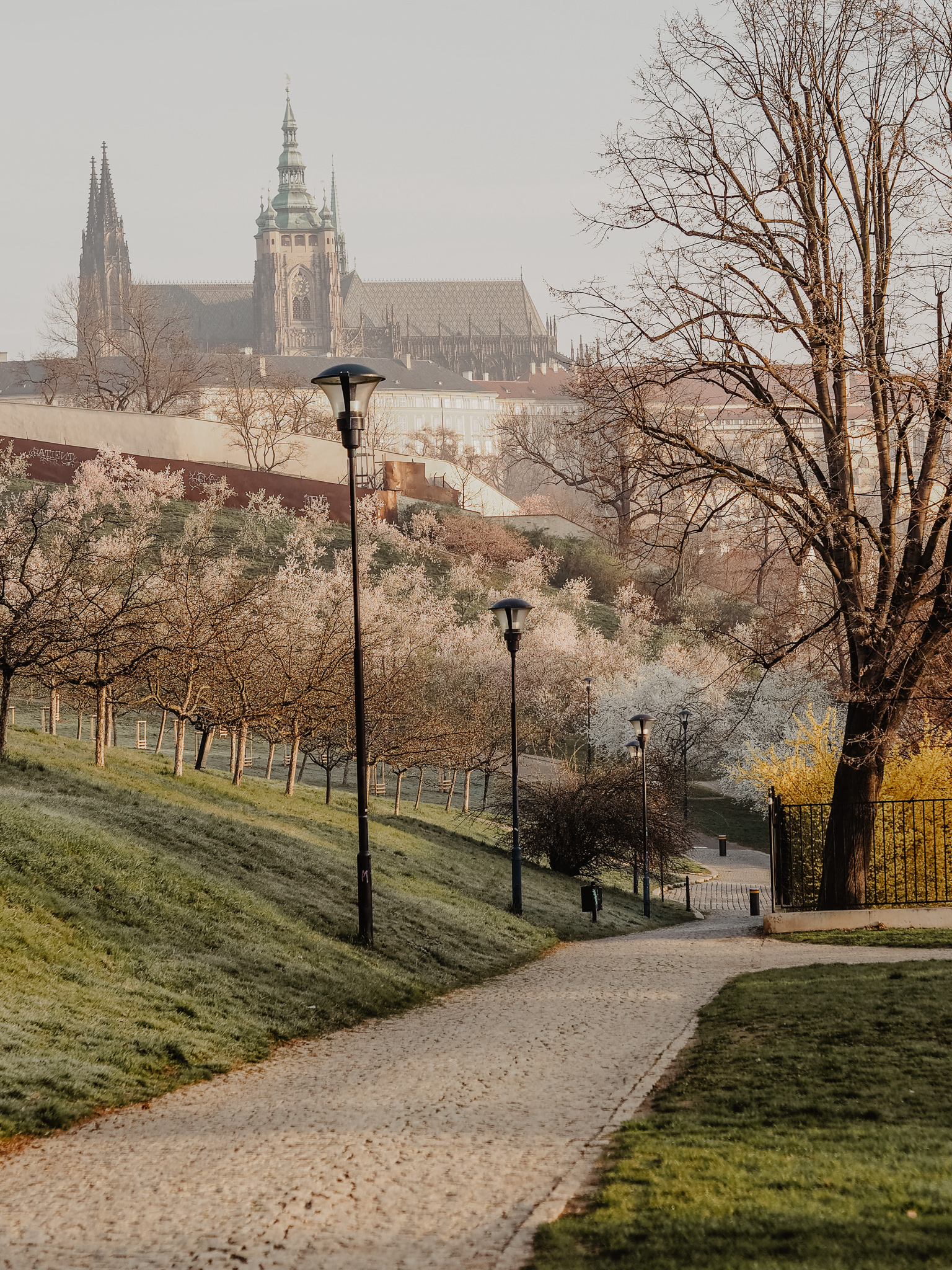 Petrin Prague Spring