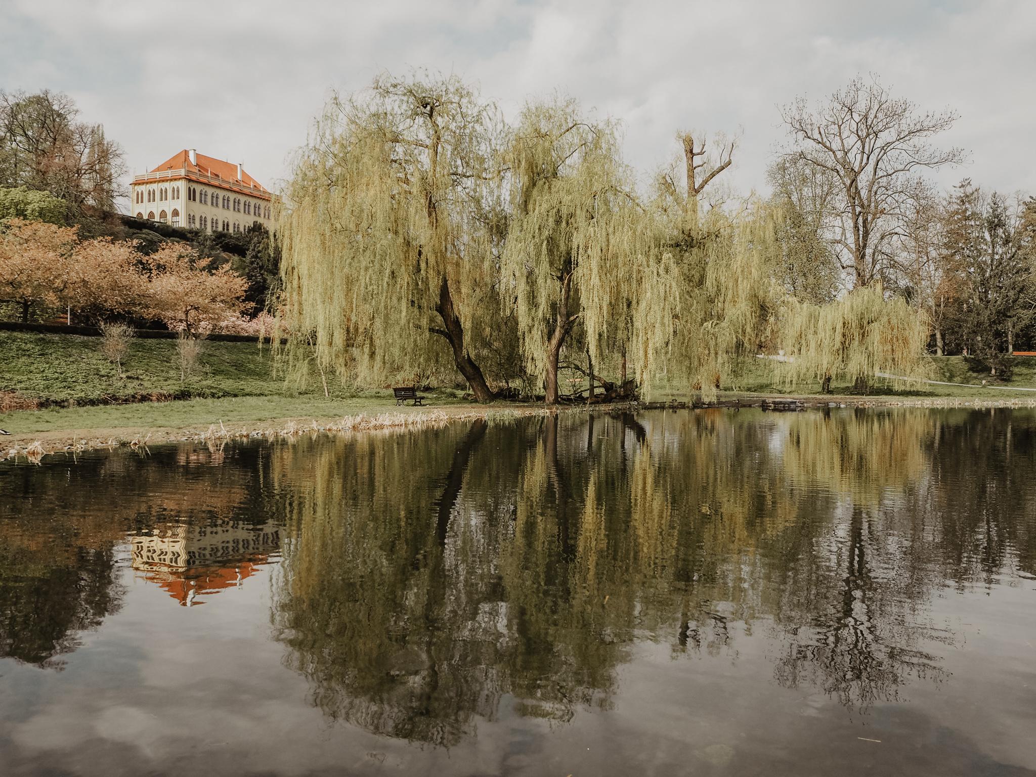Stromovka Prague Spring